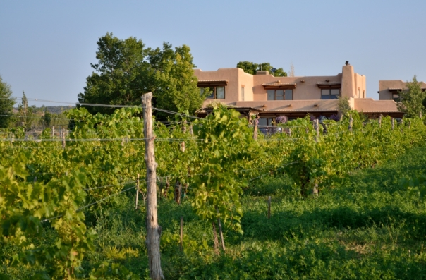 Leroux Creek Inn from vineyard